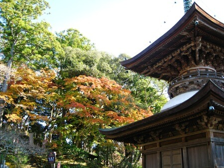 Visit local shrines and temples