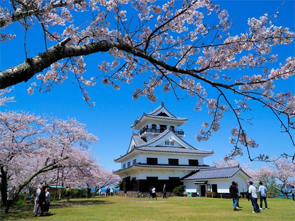 타테야마성 주소1